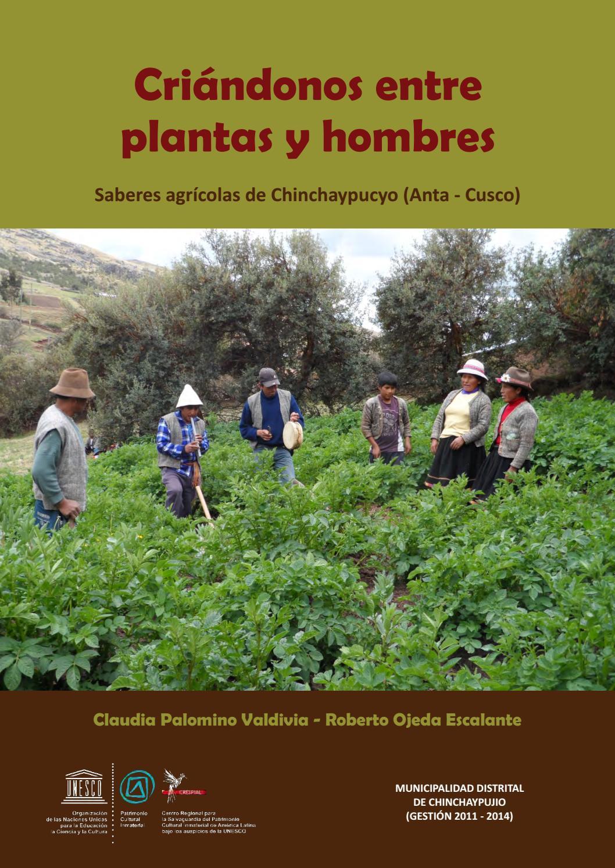Hombres Solteros - 560032